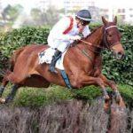 Quinté du 21/10/2021 – Auteuil – Obstacle / haies – Prix Santo Pietro